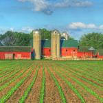 Internazionalizzazione delle imprese agricole