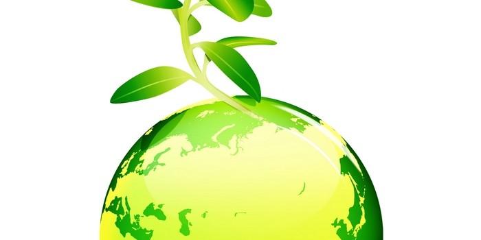 environment-ritagliato